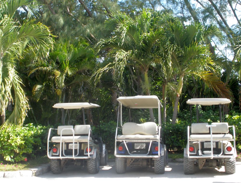 Golf Carts at Victoria House